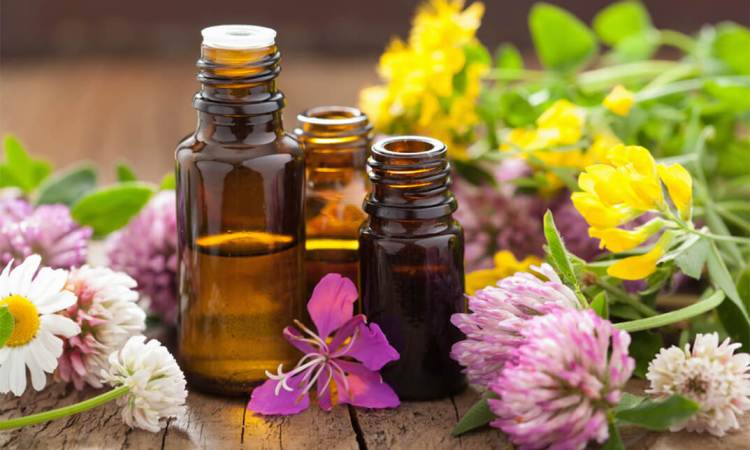 164-Aromatherapy-and-Essential-Oils-for-Stress